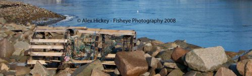 broken lobster pot washed up on shoreline